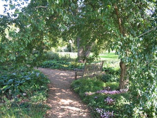 Oxford Botanical Gardens bench
