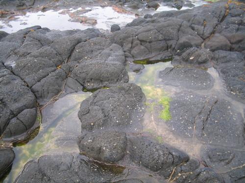 Rock-pools